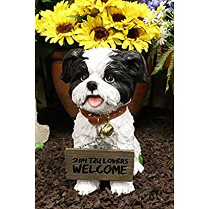 """Ebros Adorable Lifelike Panting Shih Tzu Toy Dog Breed Statue With Jingle Collar Welcome Greeting Sign 11.25""""Tall Realistic Shih Tzus Puppy Home And Garden Decor Figurine Animal Pet Memorial Sculpture 40"""