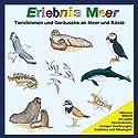 Erlebnis Meer: Tierstimmen und Geräusche an Meer und Küste Hörbuch von Karl-Heinz Dingler, Christian Fackelmann Gesprochen von:  div.