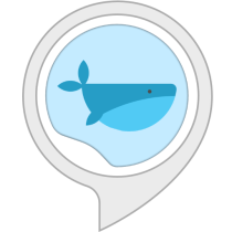 Ambient Sounds: Whale Sounds