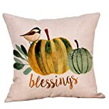 Redacel Pillow Cover Letters Printed Throw Pillow Case Cafe Home Party Christmas Halloween Decor Cushion (Pumpkin) (G)