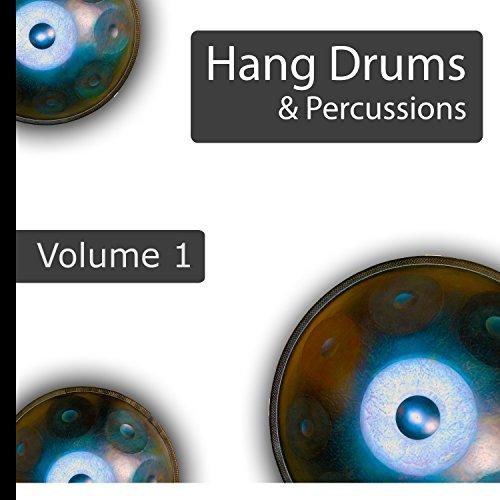 Handpan Drums Didgeridoo Got Talent