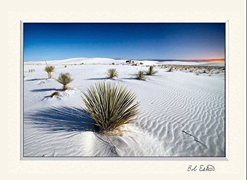 11 X 14 Inch Mat Including Photograph Of Desert Sand Dune Landscape At White Sands National Monument  New Mexico Night Sky Photograph Under Stars