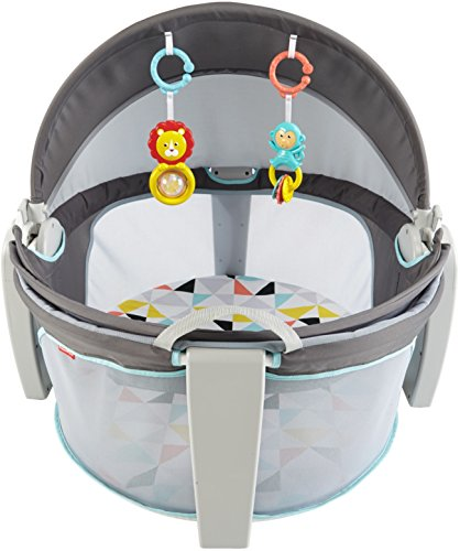Gray and White Fisher-Price On-The-Go Baby Dome