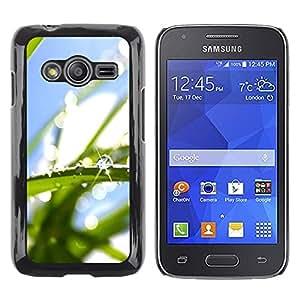 Be Good Phone Accessory // Dura Cáscara cubierta Protectora Caso Carcasa Funda de Protección para Samsung Galaxy Ace 4 G313 SM-G313F // Water Drop Macro Leaf