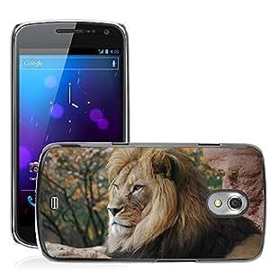 Super Stella Slim PC Hard Case Cover Skin Armor Shell Protection // M00104519 Lion R Wild Animal Zoo Wild // Samsung Galaxy Nexus GT-i9250 i9250