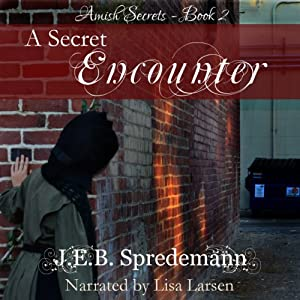 A Secret Encounter Audiobook