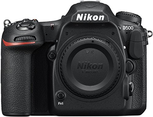 (Nikon D500 DX-Format Digital SLR (Body Only))
