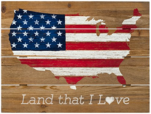 Malden International Designs Land That I Love Americana Silkscreened Routed Wood Wall Sign, 12x16, Barnwood ()