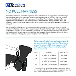 Canine Equipment No Pull Harness