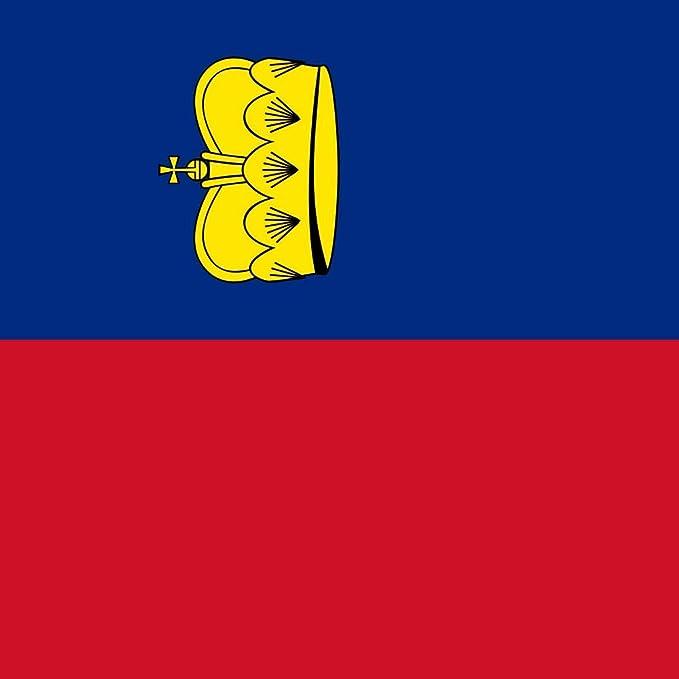 Flaggenfritze/® Tischflagge Liechtenstein 10x15 cm