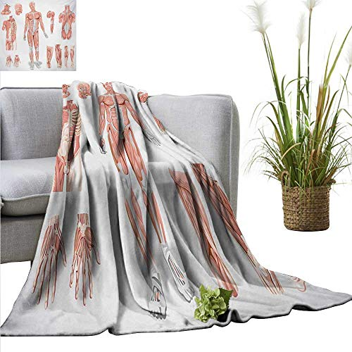 Bed Blanket,Human Anatomy,Inner Muscle System Skin Structure with Cells Biology Health Medical Display,Coral Grey,for Bed & Couch Sofa Easy Care 50