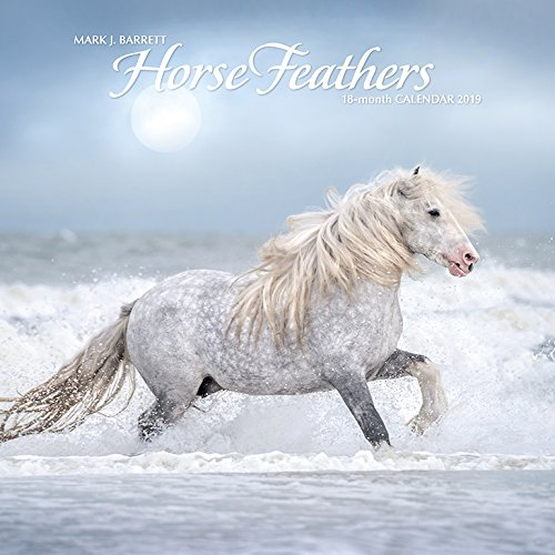 Horse Feathers 2019 Wall Calendar