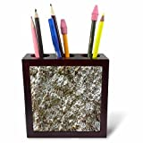 3dRose TDSwhite – Rock Photos - Textured Rock Surface Photo - 5 inch Tile Pen Holder (ph_281937_1)