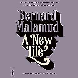 A New Life: A Novel
