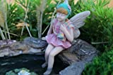 Miniature Fairy Garden Ariel – (Fairy Only, No Pond) Review