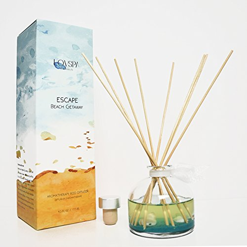 LOVSPA SPRING SALE! Ocean Scented Reed Diffuser | ESCAPE Beach Getaway Fragrance Oil by Fresh Citrus Marine Scent & Woodsy Amber | Made with Real Sea Shells!