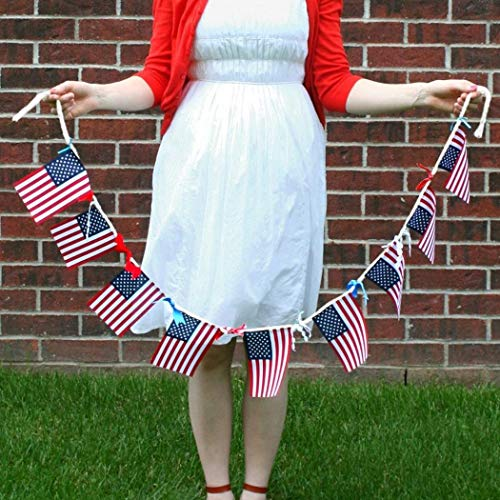 MAMOIU American Flag String Bunting Flag Banner Gift Home Garden Decoration Flags(20 Pcs)