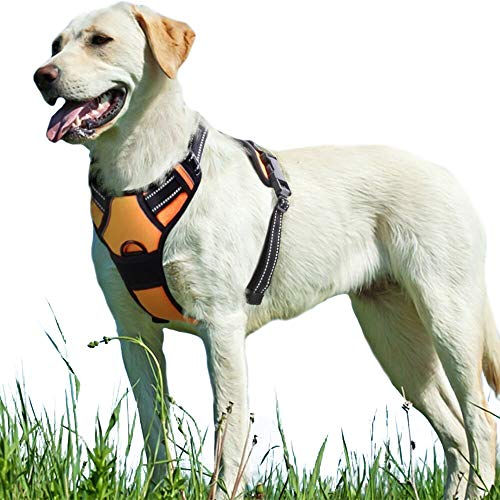 No Pull Dog Harness with Front Clip,Walking Pet Harness with 2 Metal Ring and Handle,Reflective Oxford Padded Soft Vest For Small Medium Large Breed (Orange, ()