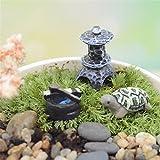 danmu miniature plant pots bonsai craft micro landscape diy decor set tortoise