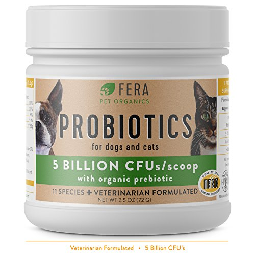 FERA Probiotics for Dogs and Cat Probiotics - Advanced Max-Strength Vet Formulated - All Natural Pet Probiotics Powder - Made in the USA - 5 Billion CFUs Per Scoop