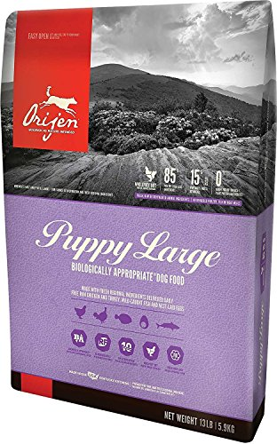 Orijen Large Breed Puppy Dry Dog Food 13 lb. Bag Chicken, Turkey Fish (Fast Delivery) Just Jak's Pet Market