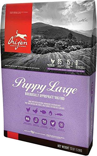 Orijen Large Breed Puppy Formula Dry Dog Food 13 Pound Bag Fresh Free-Run Chicken Turkey, Wild-Caught Fish NEST-Laid...