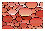 Lunarable Abstract Pet Mat for Food and Water, Stained Glass Graphic Design Mosaic Pattern Circles Lines Vibrant Illustration, Rectangle Non-Slip Rubber Mat for Dogs and Cats, Salmon Black