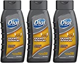 Best Dial Mens - Dial for Men Body Wash, Odor Armor, 16 Review