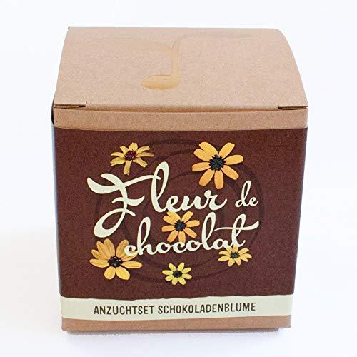 Geschenk-AnzuchtsetFleur de chocolat - Schokoladenblume Naturkraftwerk e. U.