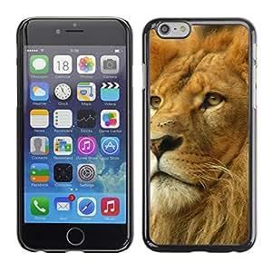 Carcasa Funda Case// Lion V0000008 //Apple Iphone 6 4.7