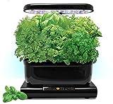 Miracle-Gro AeroGarden 6 Harvest LED with Gourmet Herb Seed Pod Kit and Bonus Tomato Kit