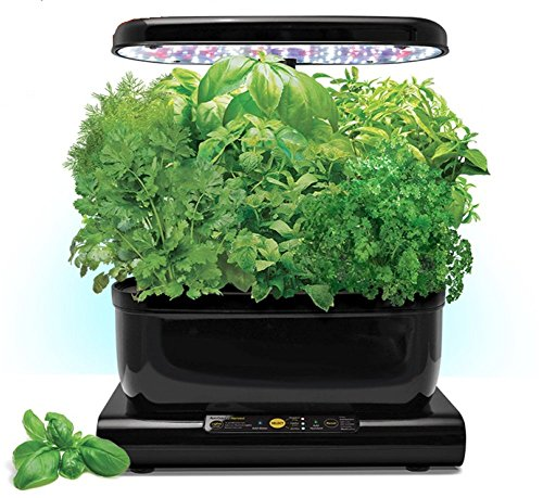 Miracle-Gro AeroGarden 6 Harvest LED with Gourmet Herb Seed Pod Kit and Bonus Tomato Kit by AeroGrow
