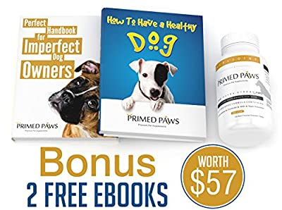 Glucosamine For Dogs w/ Chondroitin MSM ★ 2 FREE EBOOKS ★ Hip And Joint Supplement For Dogs ★ SUPER Anti-Oxidants ★ 120 Flavor-Tested (Beef) Chewable Tablets For Arthritis Pain Relief