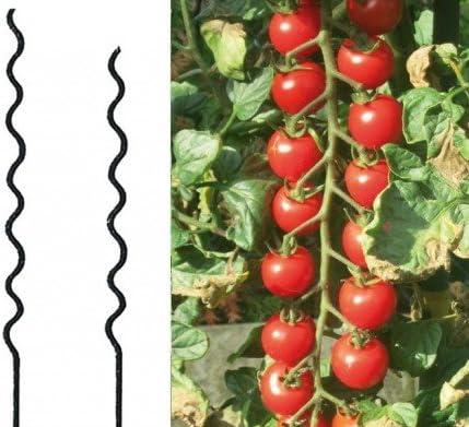 10x Tomatenspiralstab 150 cm Tomaten Spiralstab Rankspirale Pflanzstab Verzinkt