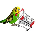Package included: 1 pcs X Parrot toy Notice: Please allow 1-3mm error due to manual measurement. pls make sure you do not mind before you bid. 2.The colors mayvary in different display,pls understand.