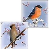 RSPB Luxury Christmas Cards - Waxwing & Bullfinch Winter Birds by RSPB