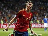 Fernando Torres 18X24 Poster #RA06