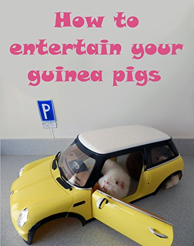 How to entertain your Guinea Pigs [Illustrated]: Volume 3