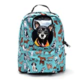 Cheap SOURCER Lightweight Pet Cat Dog Carrier Backpack, Classic Superbreak with Breathable Windows – Blue