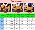 Idepet(TM) Adidog Pet Dog Cat Clothes 4 Legs Cotton Puppy Hoodies Coat Sweater Costumes Dog Jacket (XS, Pink)