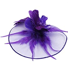APXPF Women's Vintage Party Wedding Flower Feather Mesh Net Fascinator Hair Clip Hat
