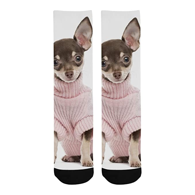 Cute Small Chihuahua Puppy Dog Polyester Crazy Warm Crew Soccer Compression  Knee High Dress Troser Sock 85df3394e0