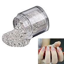 Coromose 10g/Box Gold Sliver Nail Glitter Powder Shinning Nail Mirror Powder (Silver)