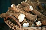Horseradish Root, 6 ounces (Sold by Weight). Great for Planting, Seasoning or Sa