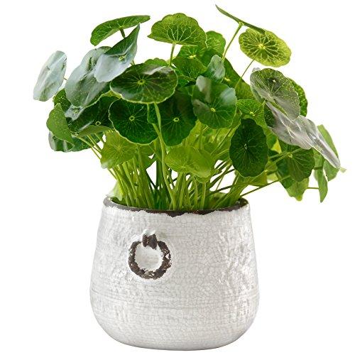 MyGift Mediterranean-Style Ceramic Planter Pot with Distressed White Crackle Glaze, (Mediterranean Pot)