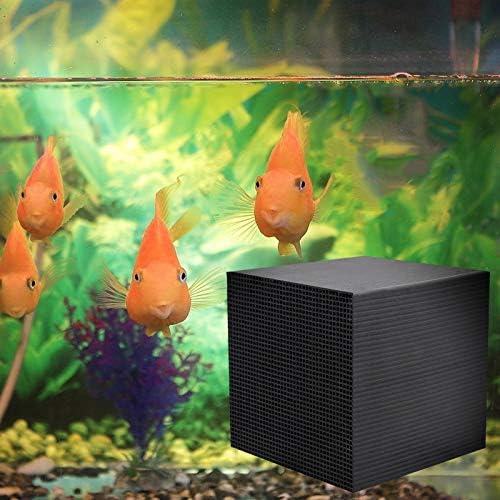LARRY-X Cubo purificador de Agua Eco-Acuario Cubo de carbón ...