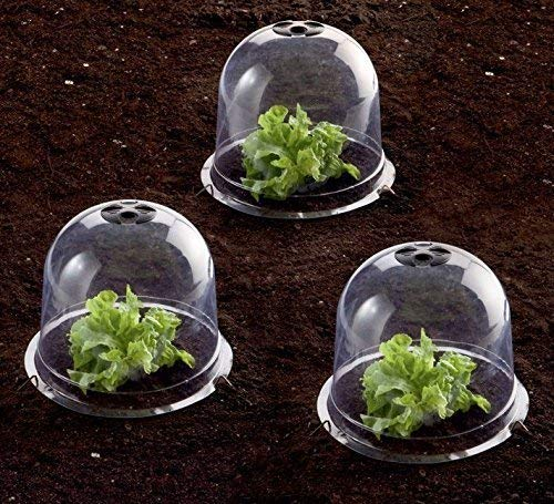 HGMart Plastic Protective Garden Bell Cloche, Plant Cover with Summer Shading, Pins, Insect Barrier (5 Pack, Dia13 xH11.8)