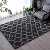 Flover Soft Indoor Large Modern Area Rugs Shaggy