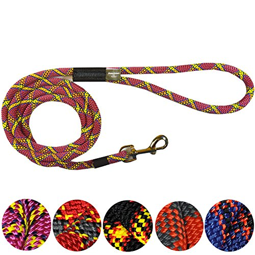 Downtown Pet Supply DTPS, Durable Dog Rope Leash, 6 feet, Purple, Mountain Climbing Rope Leash