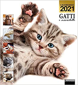 Amazon.it: Gatti e marachelle. Calendario 2021     Libri in altre